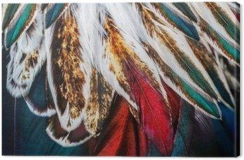 Canvas Heldere bruine veer groep van zo'n vogel