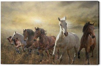 Canvas Kudde paarden galopperen vrij bij zonsondergang
