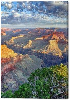 Canvas Ochtendlicht in de Grand Canyon