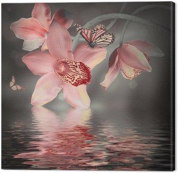 Canvas Orchideeën met een vlinder op de gekleurde achtergrond