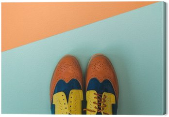 Canvas Plat fashion set: gekleurde vintage schoenen op gekleurde achtergrond. Bovenaanzicht.