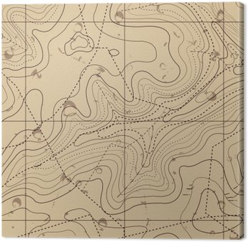 Canvas Print Abstract Retro Topography map Background