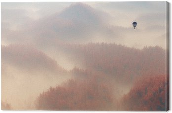 Aerial of misty autumn pine tree forest with hot air balloon.