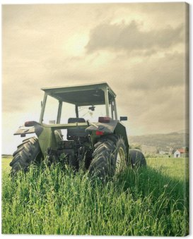 Canvas Print agriculture