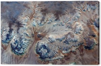 allegory underwater flowers,Stone plant fantasy,Abstract Naturalism,abstract photography deserts of Africa from the air,abstract surrealism,mirage,fantasy forms in the desert,plants,flowers, leaves,