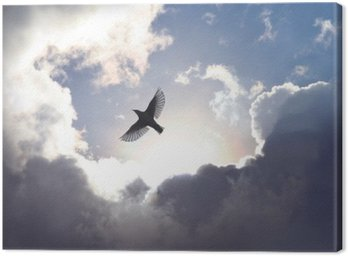 Canvas Print Angel Bird in Heaven