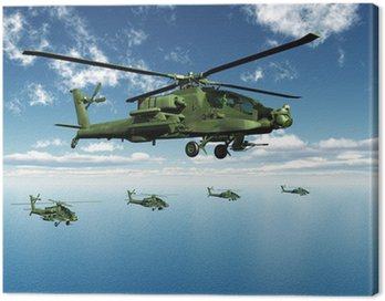 Canvas Print Apache Helicopters