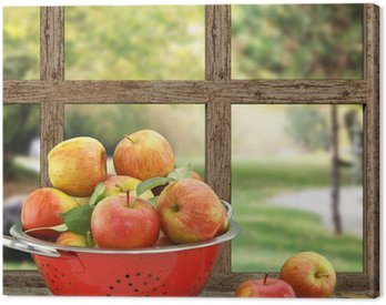 Canvas Print Apples in colander on wooden window with view