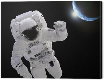 Canvas Print Astronaut