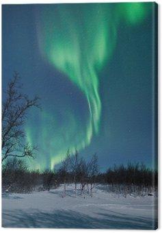 Canvas Print Aurora Borealis in Sweden
