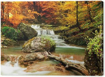 Canvas Print Autumn creek woods with yellow trees