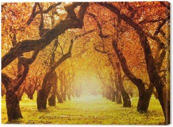 Canvas Print Autumn. Fall. Autumnal Park