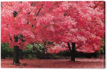 Canvas Print autumn fantasy
