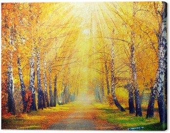 Canvas Print Autumnal Park. Autumn Trees and Leaves in sun rays