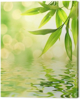 Canvas Print Bamboo leaves reflected in rendered water