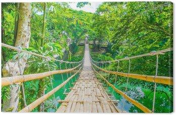 Bamboo pedestrian suspension bridge over river Canvas Print