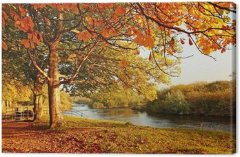 Canvas Print Beautiful Autumn in the park