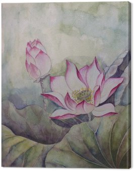 Canvas Print beautiful blooming lotus