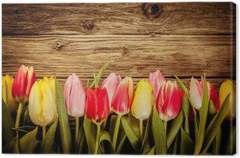 Beautiful fresh tulip border on rustic wood Canvas Print