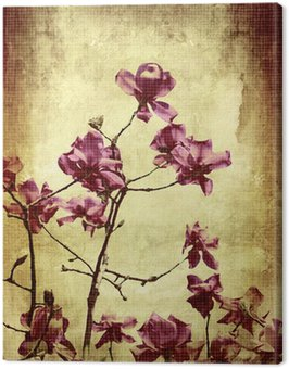 Beautiful grunge background with magnolia Canvas Print