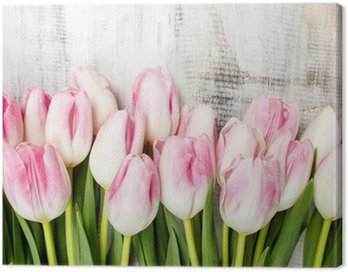 Beautiful pink and white tulips on wooden background. Copy space Canvas Print