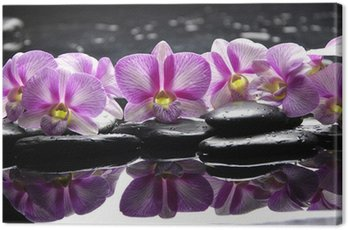 Beautiful pink orchid with black stones reflection Canvas Print