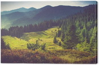 Beautiful summer mountain landscape at sunshine. Canvas Print