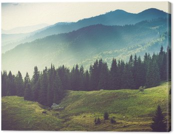 Canvas Print Beautiful summer mountain landscape.