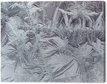 beautiful winter frosty pattern made of brittle transparent crystals on the glass Canvas Print