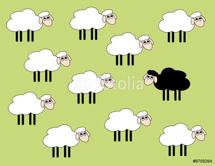 Canvas Print Black and white sheep -