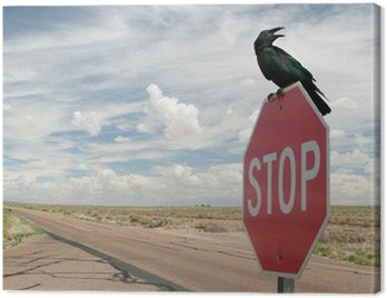 Black crow on stop sign