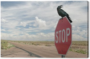 Canvas Print Black crow on stop sign