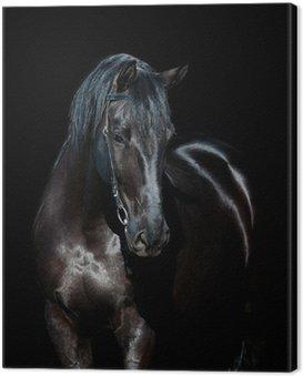 Canvas Print Black horse isolated on black background