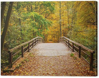 Canvas Print Bridge in autumn forest