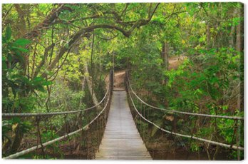 Bridge to the jungle,Khao Yai national park,Thailand Canvas Print
