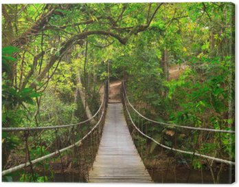 Canvas Print Bridge to the jungle,Khao Yai national park,Thailand