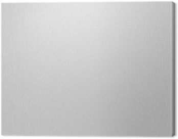 brushed metal texture (with highlights) Canvas Print