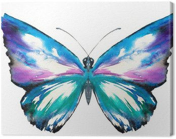 Canvas Print Butterfly watercolor painted
