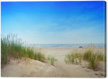 Calm beach with dunes and green grass. Tranquil ocean