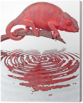 caméléon panthère rouge sur tige sèche et fond blanc Canvas Print