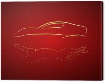 Çita yansımalı araba logosu