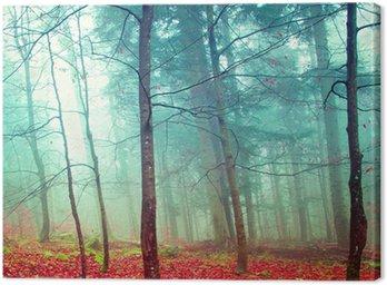Colorful mystic autumn trees
