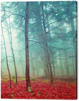 Canvas Print Colorful mystic autumn trees