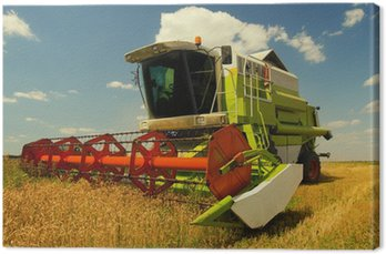 Canvas Print Combine harvester working on the wheat field
