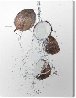 Cracked coconuts in water splash on white