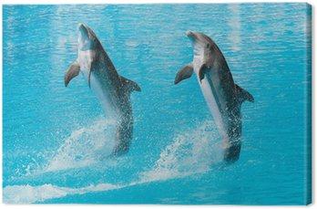 Canvas Print Delfines