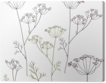 Canvas Print Dill or fennel flowers and leaves.