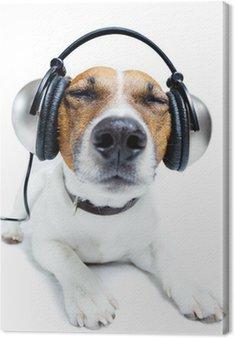 Canvas Print Dog listening music