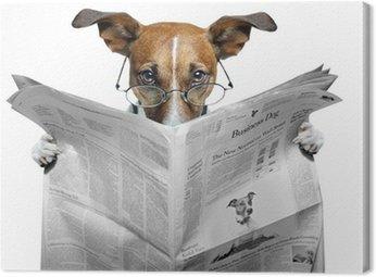 Canvas Print dog reading a newspaper