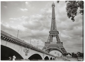 Canvas Print Eiffel tower view from Seine river square format